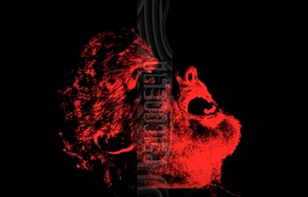 MONSTRUOS Y SUPERHEROES por Daniel Briguet