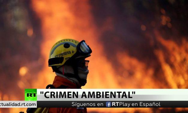 AMAZONAS EN LLAMAS – Por Sergio Rinaldi (Periodista Ambiental)