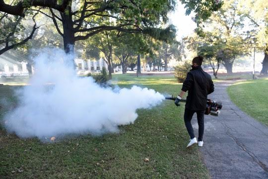 Salud Pública confirma 1102 casos de dengue en Rosario