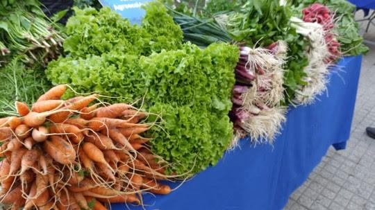 Rosario es finalista de un concurso a nivel mundial por sus políticas de producción sustentable de alimentos
