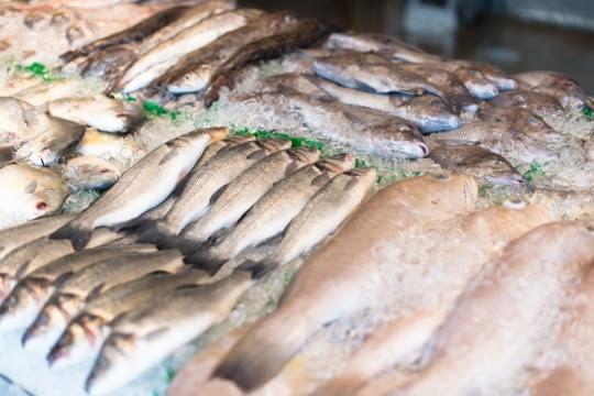 Llega la Pescadería Móvil con precios populares a ferias y mercados Arriba Rosario