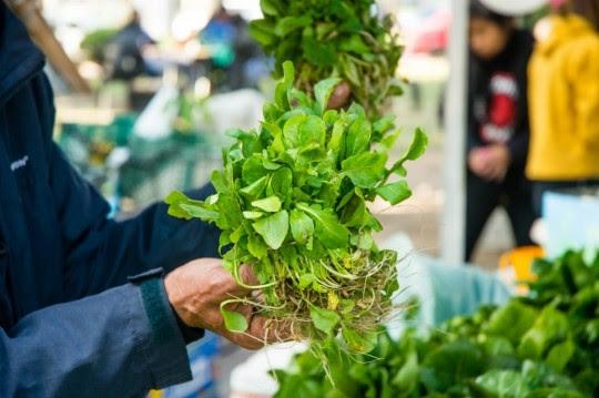 Rosario recibió un premio internacional por sus políticas de producción sustentable de alimentos